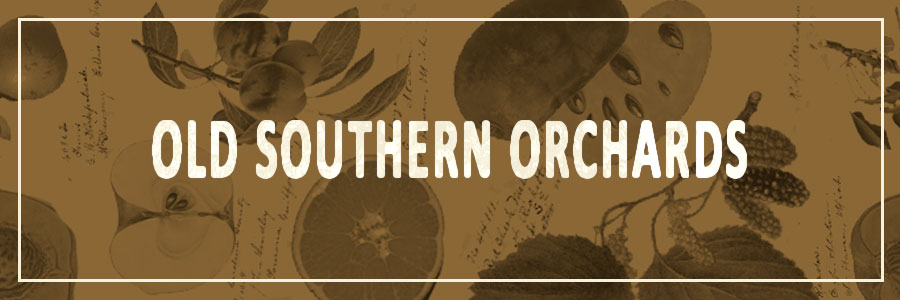 Old Southern Orchards